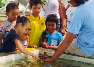 Renovada exhibición en Centro Natural Punta Culebra